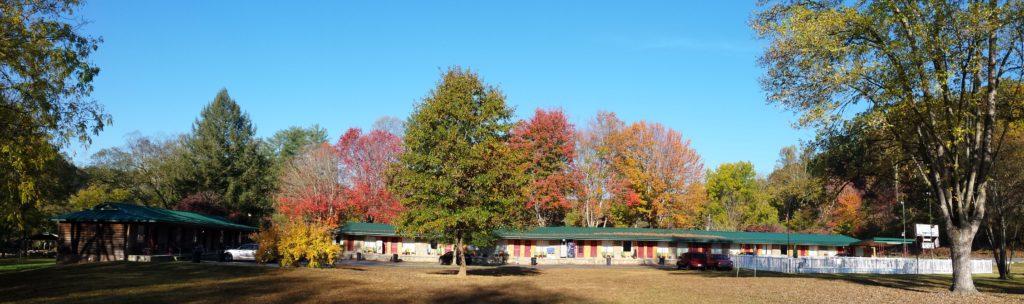Full Panoramic View Fall